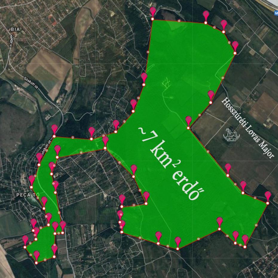 Belovagolható erdő a Hosszúréti Lovas Major közelében